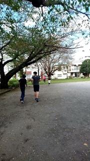11月公園.jpg
